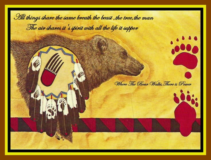 Gift of the bear by keewaydinoquay native american