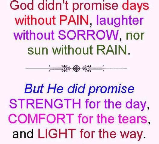 Positive Inspirational Quotes: God didn't promise days without pain...