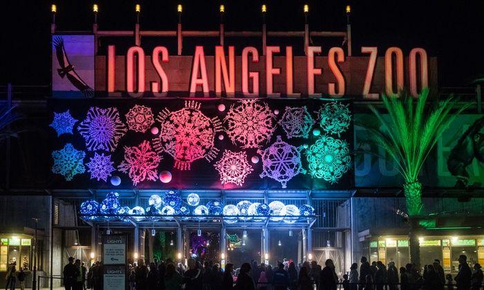 Houston Zoo Lights Ticket Prices