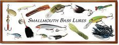 How To Catch Smallmouth Bass / Best Bass Lures