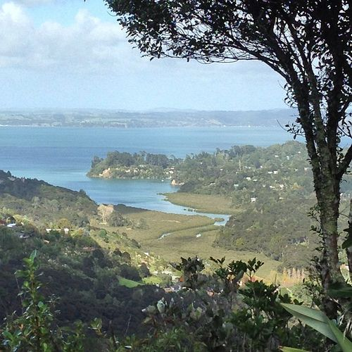 View from Mt Atkinson to Manukau Harbour.