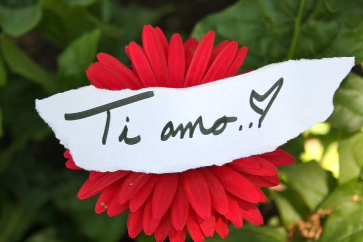 Ti amo my love, ti amo.