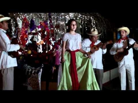 ▶ la rama tradicional veracruzana - YouTube