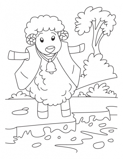 81 best Domestic Animals Coloring Pages images on Pinterest ...