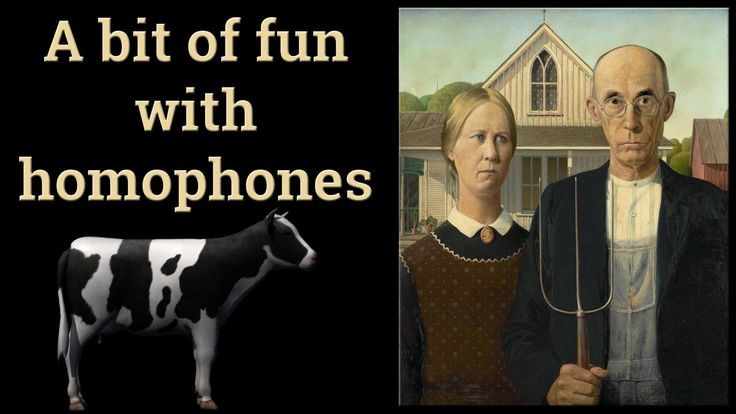 Cows | Fun with Homophones