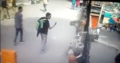 Never tame animals, when they are not doing you any harm. A young man in Shimla learned it through a knockout blow by a monkey, who didn't take well the