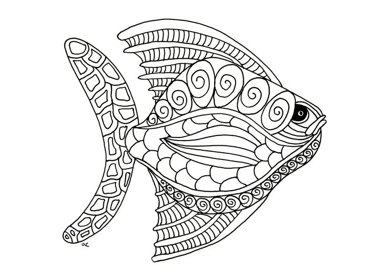 Big fish zentangle style, step 1From the gallery : AnimalsArtist : Olivier