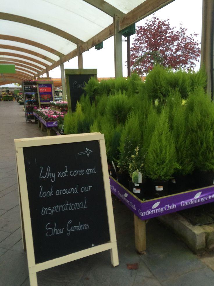 Wyevale   Bridgemere   Garden Centre   Garden Retail   Layout   Landscape    Lifestyle