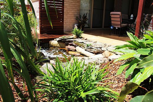 Interested in a beautiful, low-maintenance landscape?  We welcome you and help you to get a beautiful native or sustainable landscape as per your requirement. http://www.ecolibriumlandscapes.com.au/