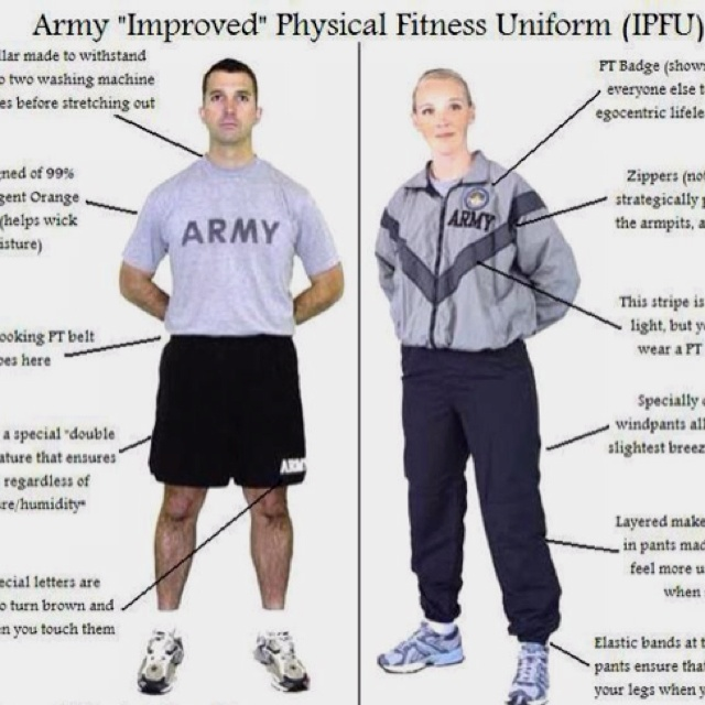 Official u. S. Army physical fitness guide walmart. Com.