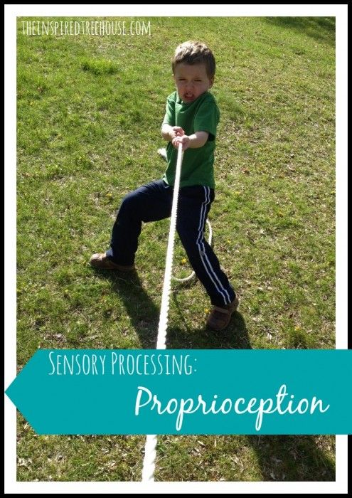 Heavy work activities (i.e. proprioceptive input) are used for children with sensory processing difficulties to help increase attention, decrease defensiveness,  and modulate arousal.