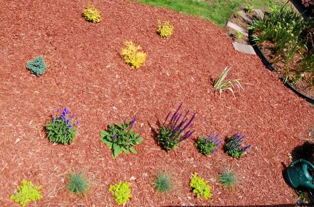 How to Plant the Perfect Flower Beds
