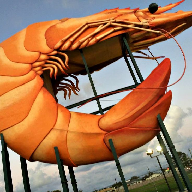 The BIG Prawn - Exmouth from TAWKer Jessica Donovan