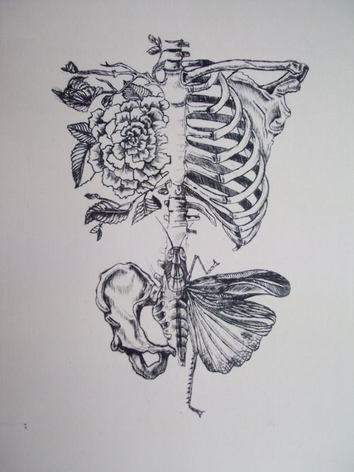 This would be a sweet tattoo.