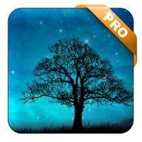 Dream Night Pro Live Wallpaper 1.6.0 APK Apps Personalisation