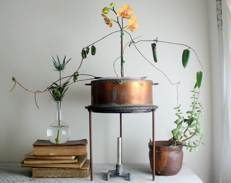 Nice display using vintage copper still and stand - Chemistry Lab. Display via ShavingKitSupplies.