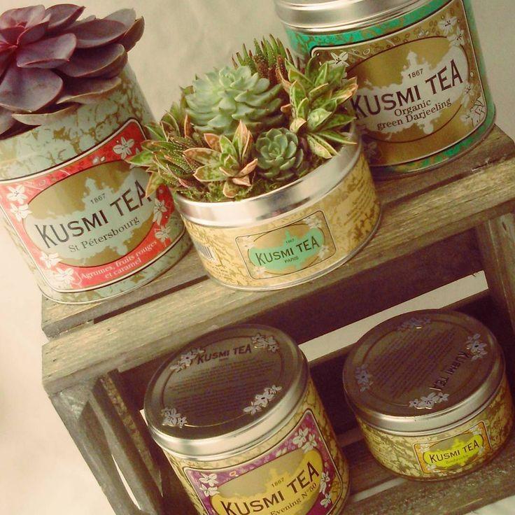 Boîte à té Kusmi transformée en petit pot succulent !