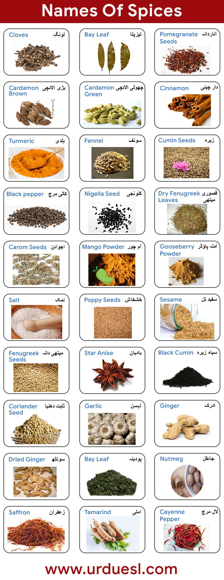 List Of Spices In English And Urdu With Pictures
