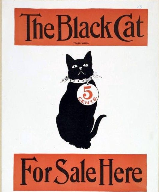 Animal-Cat-Black-Cat-Graphic.jpg 530×641 pixels