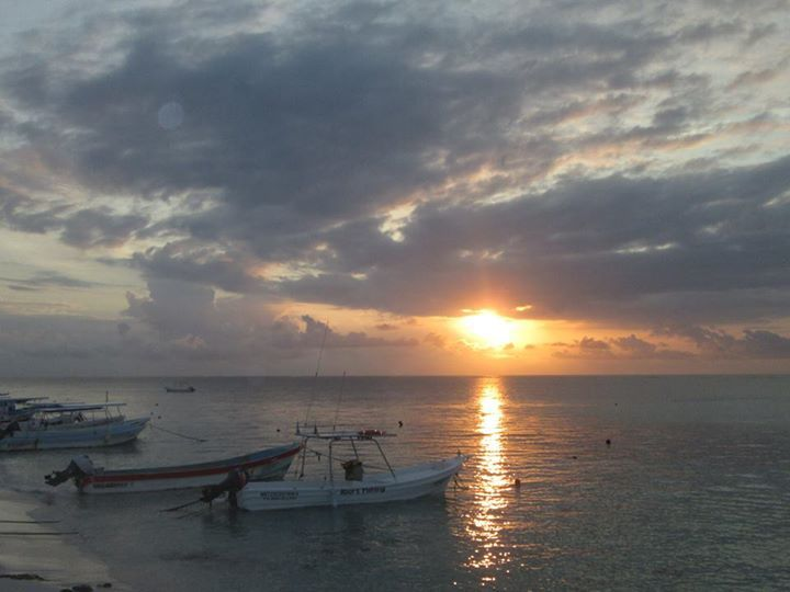 12460 best riviera maya images on pinterest riviera maya for Puerto morelos fishing