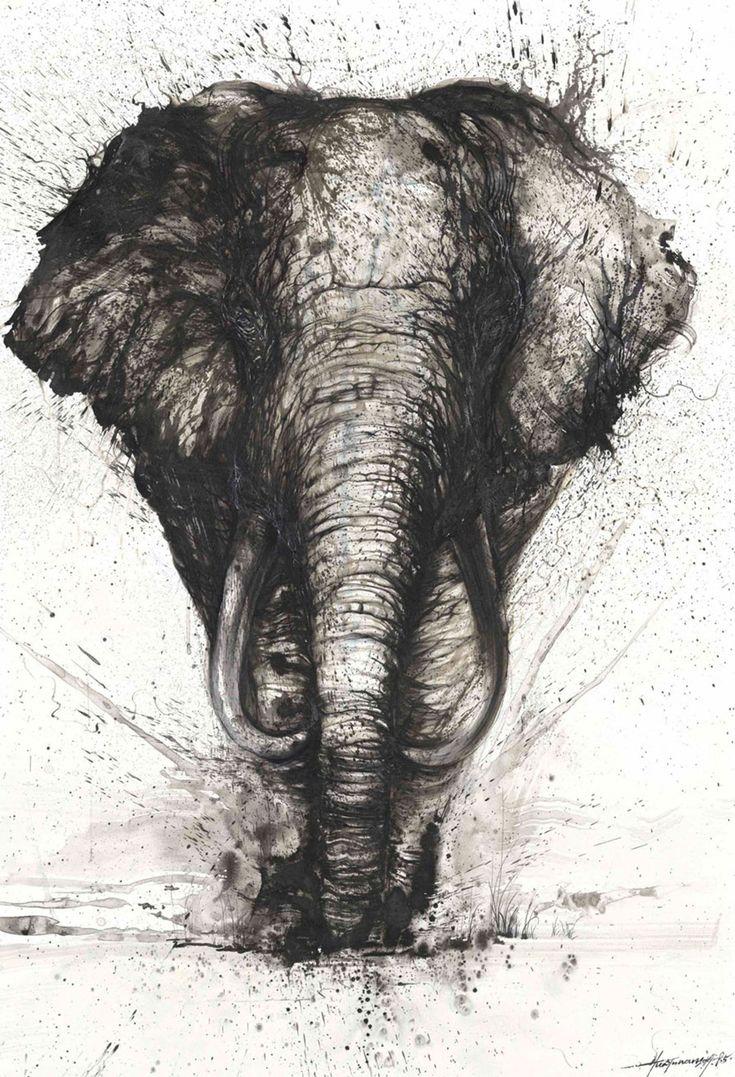 Les 25 meilleures id es concernant dessins d 39 l phant sur for Artiste dessin