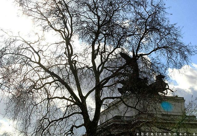 #london #photography #trees #illusion #sky #architecture
