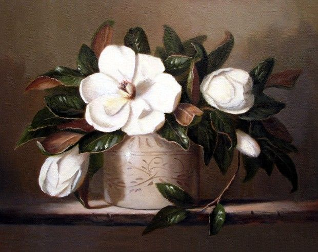 Hand-painted Still Life Oil Painting -  White Flower  more   details:  http://www.oilpaintingsstore.com/hand-painted-still-life-oil-painting-white-flower.html#