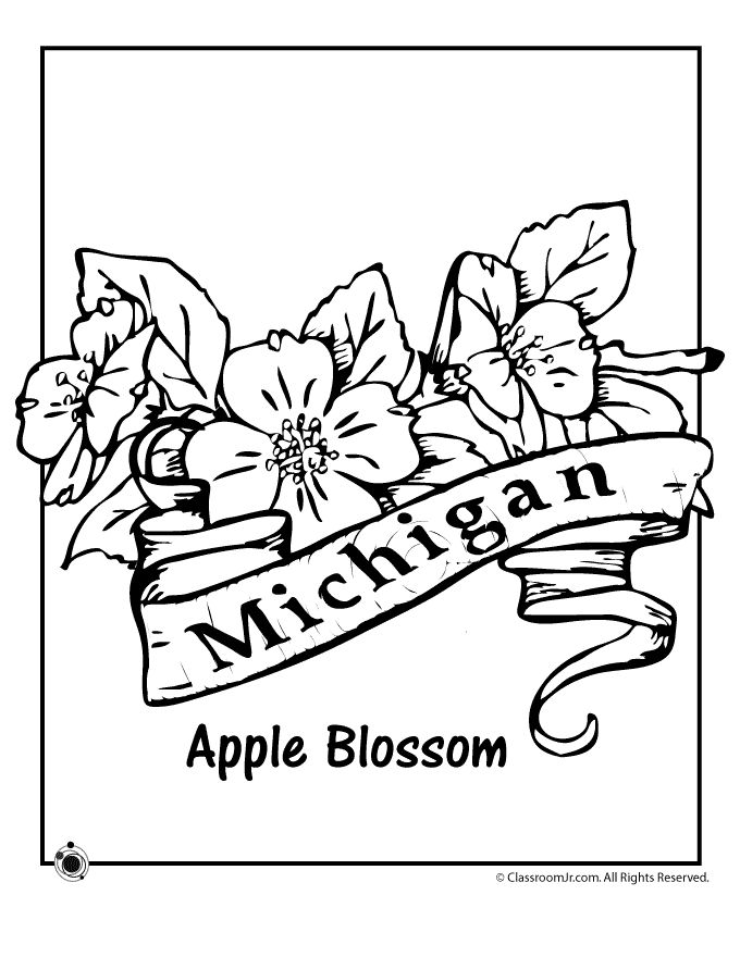 158 best State Coloring Pages and Embroidery images on Pinterest