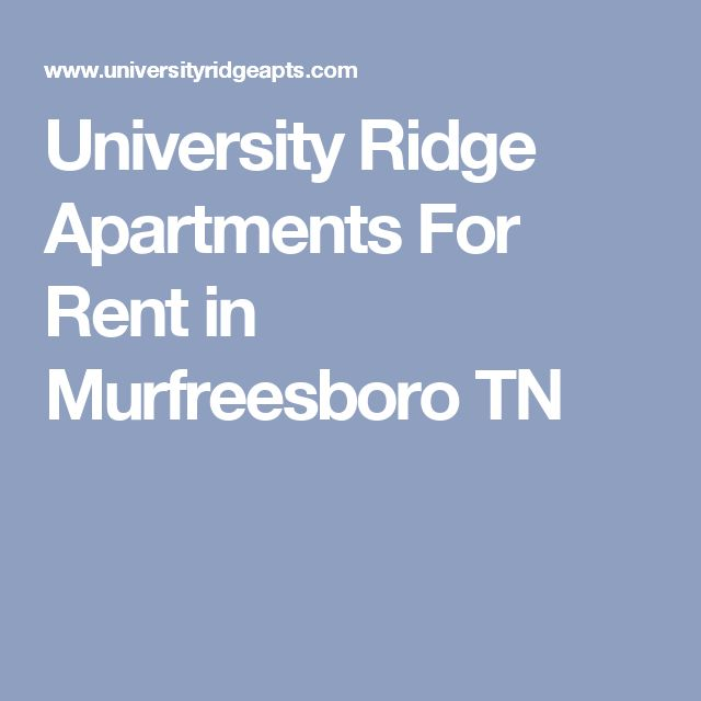 Apartments For Rent In Murfreesboro Tn: 17 Best Ideas About Student Apartment On Pinterest