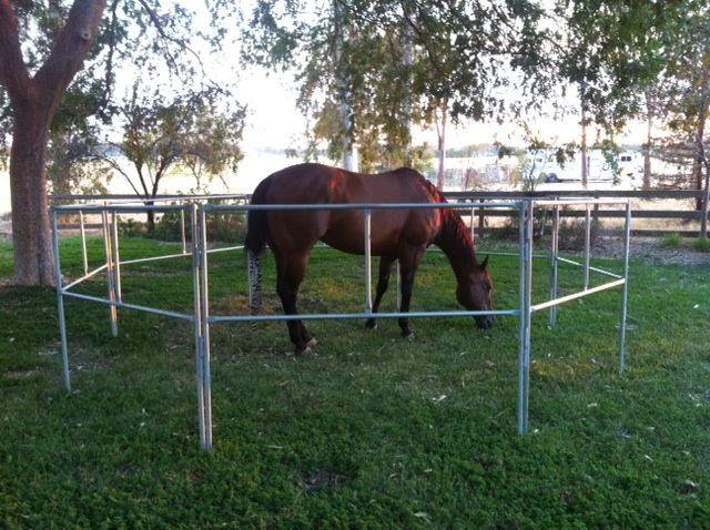 Portable Horse Corral Arena Horse Trailer Amp Fencing