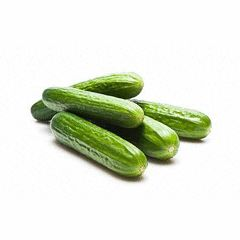 Ashley Cucumber - Cucumis Sativus - 40 Seeds | Seeds for Africa