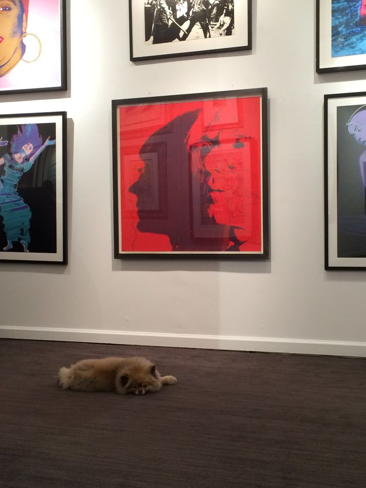 Warhol selfie and pommie!