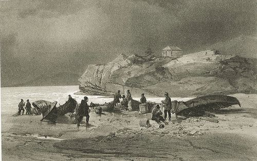 Bear Island • Sea Sami and Researchers at Bossekop or Bossegohppi in Alta Norway by P. Lauvergne,1838.