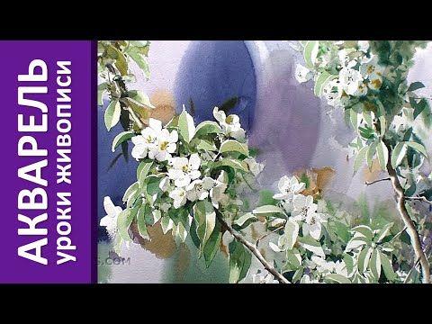 Акварель - цветущая ветка (уроки акварельной живописи) - YouTube