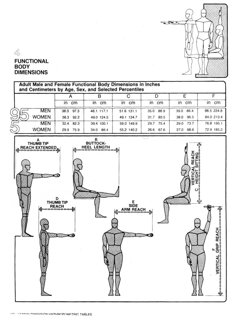 585 best ergonomia e antropometria ergonomics and for Antropometria humana
