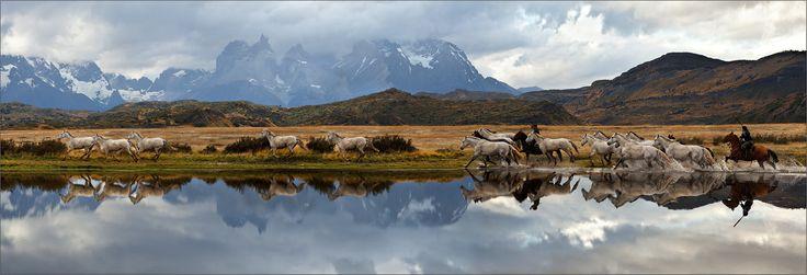 ...про гаучо, их лошадок и методах увеличения поголовья скота в рекордно короткие сроки .... панорама 10 кадров #cuernos #del #paine #patagonia #chile Автор: izh Diletant (Валерий Щербина)