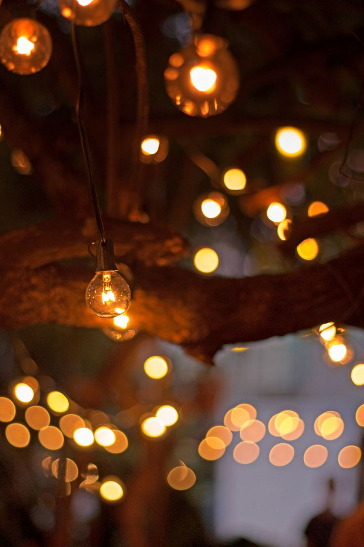 17 best images about outdoor space on pinterest urban for Fairy lights urban outfitters us
