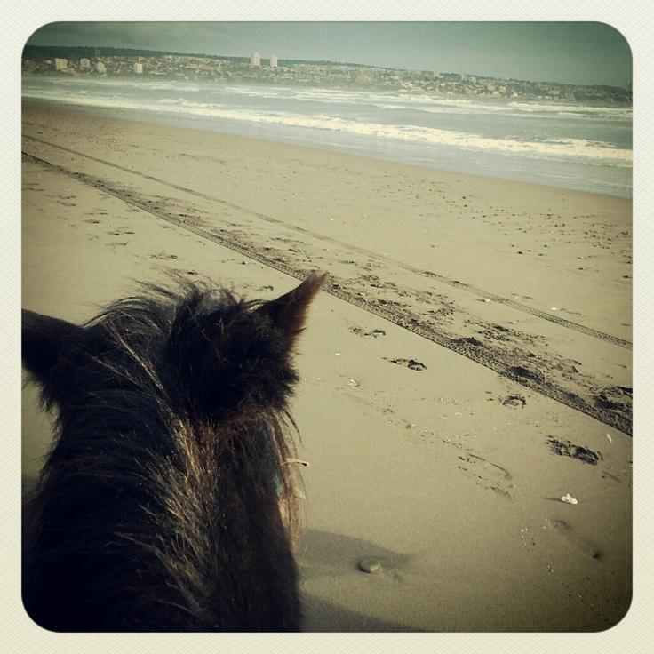 Horsebackriddin'