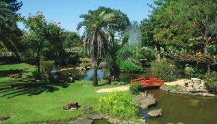 Caldas Novas com Water Park - GO 4 dias / 3 diárias