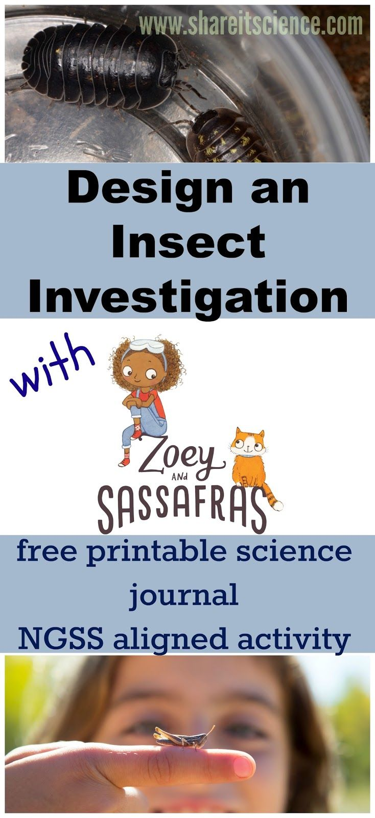 Share it! Science : Design an Insect Investigation with Zoey and Sassafras- NGSS Linked Activity
