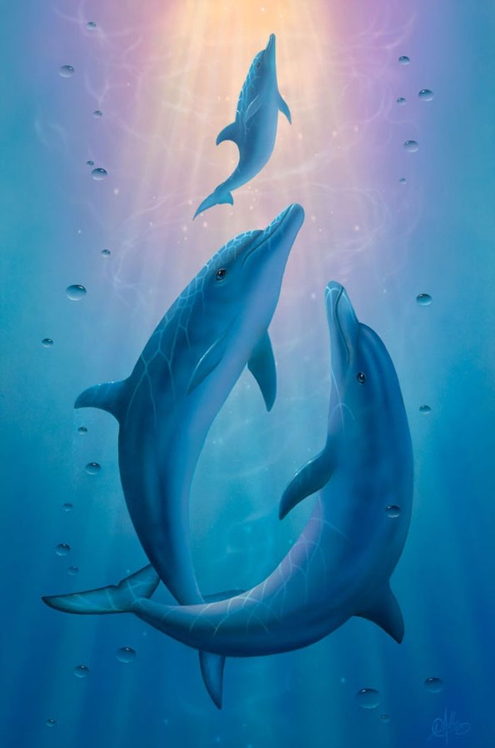 Cute Dolphin Drawing Wallpaper 1001 Ideen Zum Thema Sch 246 Ne Delfine Bilder Delfine