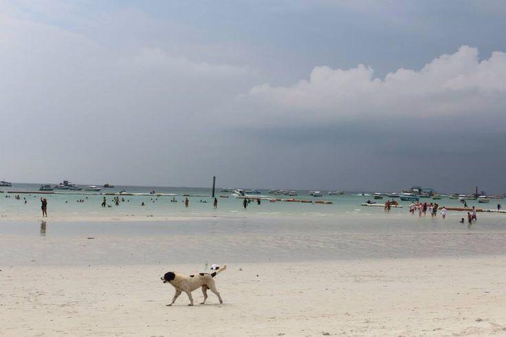 Koh Larn Island, Pattaya, Thailand