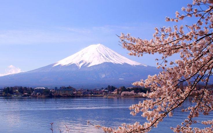 Mount Fuji er Japans mest berømte vulkan, og fra Hakone Nationalpark kan du se den tårne sig op i landskabet med sin sneklædte top. Det er et særligt smukt syn med Ashi søen i forgrunden! Du kan selvfølgelig vandre på vulkanen, og undervejs kan du købe sorte æg, som er en særlig vulkan specialitet.
