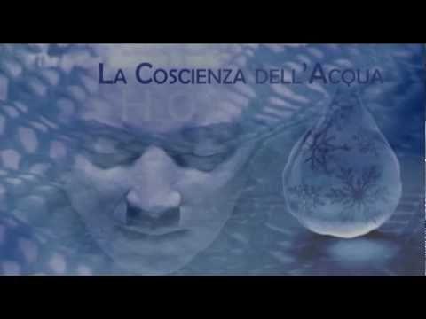 MASARU EMOTO - La Coscienza dell'Acqua - 1/2 -