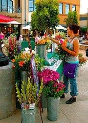 Glendale Farmers' Market in Glendale, Arizona - Twilight Farmer's Market, Open now, Wednesdays Close at 7:30
