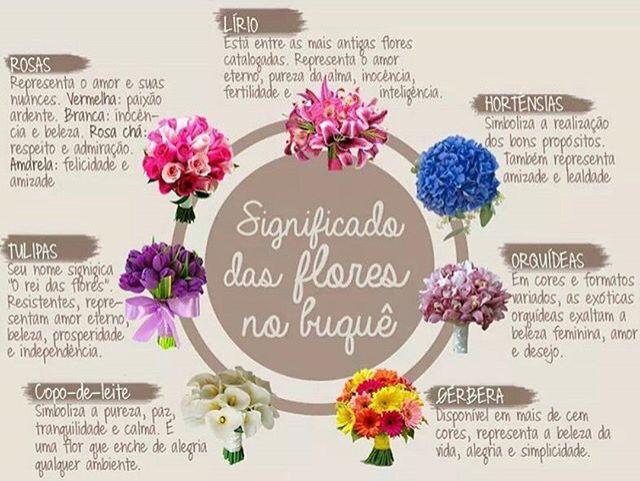M s de 1000 ideas sobre tipos de flores en pinterest - Clases de flores amarillas ...