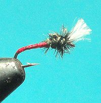 Free Fly Tying Patterns and Instructions