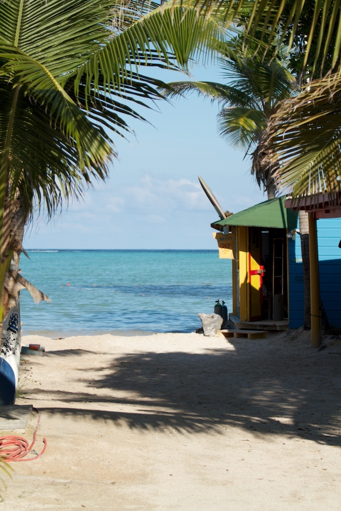 Jibe city bonaire island relax caribbean bonaire - The dive hut bonaire ...