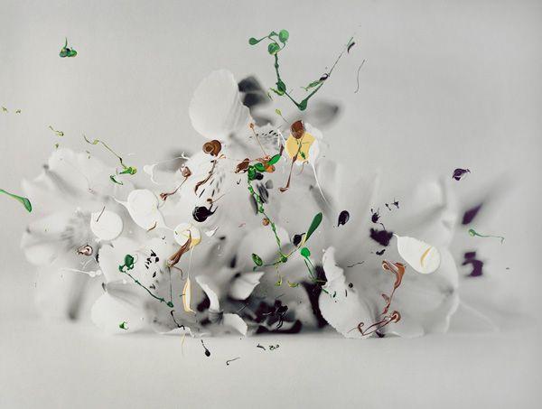 http://www.nannahanninen.com/media/works/2011/Plant_VI.jpg?t=1389211714