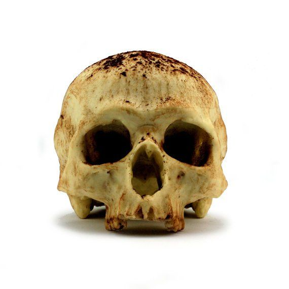 These Chocolate Skulls Are Delicious!